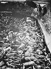 German mass grave photo of naked victims, held by the Imperial War Museum, London, UK